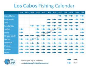 Cabo Fishing Calendar